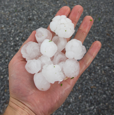 hail in palm of hand